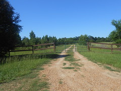 Resembles the Outback (freddiewentworth) Tags: field gate outdoors mississippi rural gravel landscape nature fence blue clearskies trees