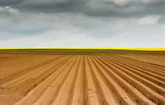 Land Space (Carlos Lacano) Tags: landscape clouds leica digilux field rommerskirchen carlos lacano germany