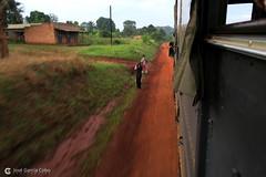 16-09-25 Uganda-Rwanda (15) Masindi R01 (Nikobo3) Tags: áfrica uganda masindi bikonzi montañasdelaluna travel viajes rural canon canong7x g7x nikobo joségarcíacobo flickrtravelaward ngc