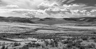 Desert Landscape in B&W