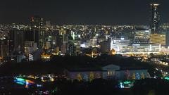 Osaka Tower View 05...