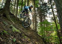 Steve (Hagbard_) Tags: bike mtb mountainbike trailbike ride enduro czech rychleby sport tour outdoor outside trailriding wood fun life friends beautiful mtbisokay nature photography rychlebskéstezky