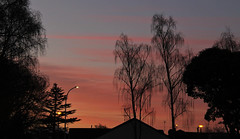 On a cold winter's eve.... (flying-leap) Tags: newzealand canon canon60d 60d northcanterbury nz 18200mm the4seasons sky 4winter winter seasons trees sunset dusk cloudsstormssunsetsunrise clouds