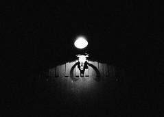 ~ the cowboy ~ (Mackeson) Tags: mackeson mulhollanddrive lynch