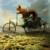 The squirrel Camilo (jaci XIII) Tags: esquilo animal roedor passeio paisagem veículo triciclo squirrel rodent ride landscape vehicle tricycle