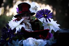 Awakenings (dreamdust2022) Tags: ash adorable cute foolish sweet brave silly day dreamer undead vampire isul boy doll