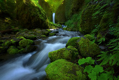 Mossy Grotto (Explored) (Sapna Reddy Photography) Tags: water stream rocks moss waterfall oregon mossygrotto