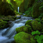Mossy Grotto (Explored) thumbnail