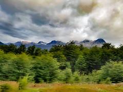 The Revenant (Ederson Gomes) Tags: vermelho patagonia argentina south end world fim do mundo ushuaia terra fogo land fire