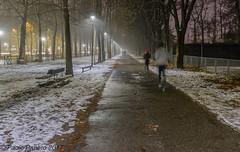 Wintry jogging at the Parco Ruffini, Turin, Italy. ((Paolo P)) Tags: trees winter cold italy white snow frost jogging snowy turin wintry torino parcoruffinitorino alberi inverno freddo italia bianco neve invernale ghiaccio