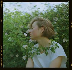 Daşa (Stefan Botnari) Tags: film kodak ektar 100 medium format 6x6 analogue kiev88 kiev 88 volnna 3 80mm 28 tetenal c41 kit developer 9000f mark 2 canoscan portrait nature flower