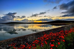 Sunset flowers (Peideluo) Tags: reflection clouds reflejo sky water flowers sun amanecer landscape paisaje agua cielo lago