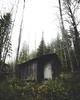 house of the goblins (Nippe16) Tags: moody forest woods mood fog mist atmosphere landscape finland green autumn suomi scary