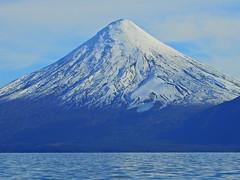 Volcán Osorno (Mono Andes) Tags: andes chile chilecentral volcán volcano volcanoe volcánosorno parquenacional parquenacionalvicentepérezrosales glacier glaciar lagotodoslossantos crucerupancotodoslossantos