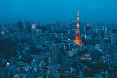 Tokyo tower 東京鐵塔|東京遊記 Tokyo trip (里卡豆) Tags: olympus penf olympus25mmf12pro 日本 東京 東京鐵塔 japan tokyo tokyotower tower asia night city