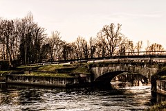 Bridge over the river (u.giommetti) Tags: colore color campagna country alberi trees inverno winter natura nature canale river ponte bridge canaledellamuzza lombardia lodigiano italia italy