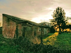 IMG_20170225_173205 (storvandre) Tags: storvandre lombardia lombardy countryside campagna nature landscape road zibido milano parco agricolo