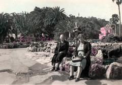New Zealand - Napier (Boobook48) Tags: botanicalgardens garden napier newzealand sepia tinted clivesquare