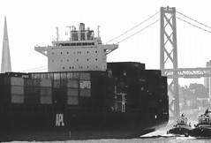 Elitechrome 400 1446-BW (bunæn) Tags: bw 35mm transamericatower bayarea film canoneos1v canonef400mmf56lusm bay sanfranciscobay sanfrancisco baybridge biketrail baytrail bicycletrail kodakelitechrome400vs canoneos1vthefordcrownvictoriaofcameras fleetweek middleharborshorelinepark apl tractortug tugboat americanpresidentlines shippingcontainer containership
