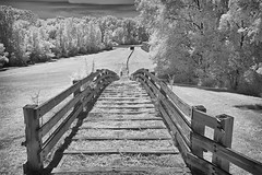 Dead Man Hill Hines-10 NIK (dragos.tranca) Tags: michigan northville infrared bw canon t5 18135mm 3556 stm landscape cityscape