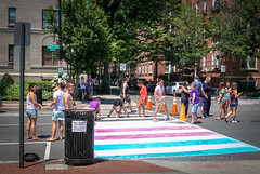 2017.06.10 Painting of #DCRainbowCrosswalks Washington, DC USA 6348