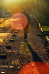 Running through circles (Otacílio Rodrigues) Tags: homem man jogging corrida correndo running contrazul againstlight flare rua street sun sol brilho brightness urban cidade city streetphoto resende brasil oro grama grass árvore tree topf25