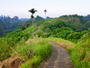 Bali Landscape (danielfoster437) Tags: naturelandscape ubud bali fujigfx50s baliscenery landscape indonesia gfx50s balinaturelandscape aisajedelanaturaleza naturlandschaft natuurlandschap 小道 バリ 歩く 熱帯 郊外の風景