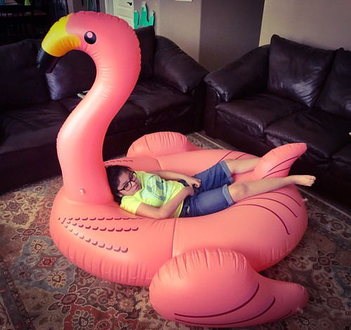 No Big Deal, Just A Flamingo