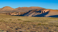 Farellones altiplanicos (Andres Puiggros) Tags: d500 altiplano andes arica chile guallatire nature nikon scouting travel landscape sunrise