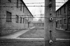Auschwitz (FabrizioBarbieri) Tags: auschwitz leica leicam6 leicasummaron leicam m6 film filmphotografy filmisnotdead ishootfilm analogico analog fotografiaanalogica analogue ilford ilfordhp5 blackandwhite bw biancoenero bianconero