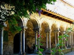 Glycine et roses trémière (Scratina) Tags: aude abbayedevillelongue architectureromane colonnes fleurs