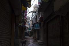 Enpty Bylanes of Minar (Arpa Ghosh) Tags: charminar history laad bazar market telangana hyderabad tourism india canon 121clicks heritage nizam qutub
