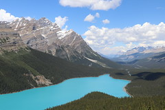 Peyto Lake (Navin75) Tags: lake mountains peyto peytolake banff canada