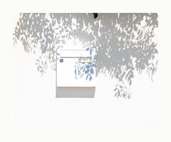 Un temps de cigale .. (hélène chantemerle) Tags: façades feuilles murs ombres soleil lumière blanc boîteàlettres leaves wall maiboxe sun shadows light white