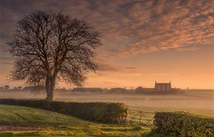Rural Morning (Captain Nikon) Tags: shepshed belton leicestershire rural farmland farm lonetree silhouette misty mist atmospheric moody sunrise springtime spring gate nikond7000