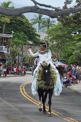 Princess of NI'ihau (BarryFackler) Tags: kingkamehamehadaycelebrationparade kingkamehamehaday 2017 parade event holiday celebration aliidrive kona hawaiiisland kailuakona polynesia westhawaii bigisland hawaii hawaiicounty northkona pauprincessofniihau princesscheyennemedeiros cheyennemedeiros princess pauprincess pauskirt paurider rider horsewoman horse mount steed equestrian equine street lei headdress banyantree trees palmtrees palms barryfackler barronfackler outdoor island animal hawaiianislands hawaiianculture hawaiianhistory sandwichislands paniolo tropical