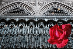 Manchester (rustyruth1959) Tags: nikon nikond3200 tamron16300mm manchester manchestercathedral quire quirecarvings rose redrose cathedral church religiousbuilding worship carvings