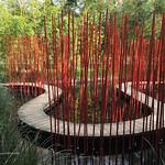 Le chemin de bambous thumbnail
