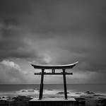 Torii Gate