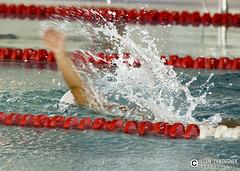 """adam zyworonek fotografia lubuskie zagan zielona gora • <a style=""""font-size:0.8em;"""" href=""""http://www.flickr.com/photos/146179823@N02/34563407740/"""" target=""""_blank"""">View on Flickr</a>"""