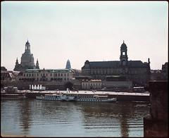 Dresden 2016 XXIII (__Daniele__) Tags: konica minolta expired film analogue analog c41 6x7 120 makina67 plaubel dresden sachsen saxonia