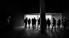 the magic of light / staying inside looking outside (Özgür Gürgey) Tags: 12mm 169 2017 bw d750 darkcity elbphilharmonie hafencity hamburg nikon photingo samyang architecture dark fisheye shadow silhouettes germany