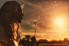 Around the Sun (Chrisnaton) Tags: dandelion spring löwenzahn flying lionstooth eveningmood eveningcolors eveningsun girl nature makeawish