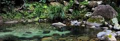 Rock Pool near Josephine Falls North Queensland Australia. (jasonsulda) Tags: rock pool josephine falls babinda queensland australia waterfall clear stream national park rainforest