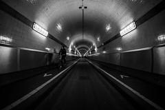 Biking / How deep can you get? (Özgür Gürgey) Tags: 12mm 2017 bw d750 elbtunnel hafen hamburg nikon photingo samyang architecture fisheye harbor leading lines motion shadow symmetry tunnel germany