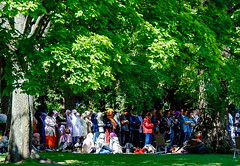 Congregational Prayer at Ostpark, Frankfurt (A. Yousuf Kurniawan) Tags: muslim islam people pray park citypark green tree activity urbanlife moslem dailylife