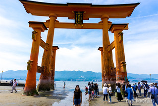 The Great Torii