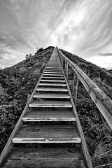 Heading to the heavens. (Ian Ramsay Photographics) Tags: heading heavens brunyisland tasmania australia