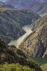 The canyon (52weeks2017#20 - Quiet Place) (ponzoñosa) Tags: ribeira sacra galiza spain cañón sil canyon river río 52weeks 52 quiet place lugar monasterio vino wine viticultura