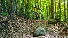 2017.05.25 Borsberg (Michael_Topp) Tags: sony nex 3 baum wald dresden mountainbike fahrrad licht